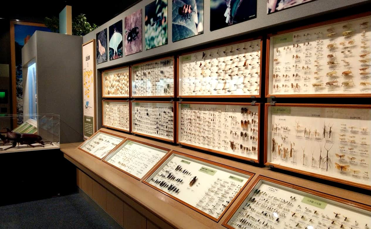 miyazakimuseum6-min