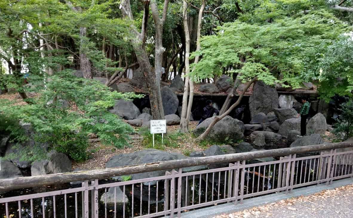 miyazakisityuuoupark13-min