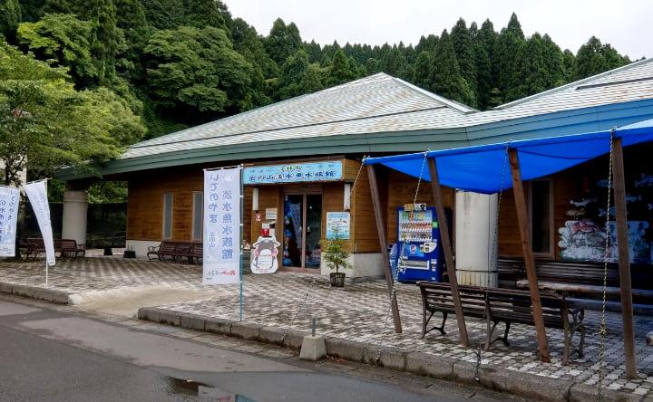 idenoyamapark-freshwaterfish-aquarium1-min