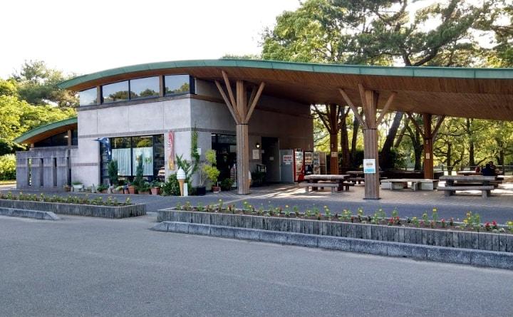 shiminnomori-park1-min