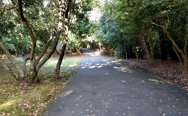 shiminnomori-park17-min