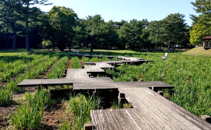 shiminnomori-park4-min