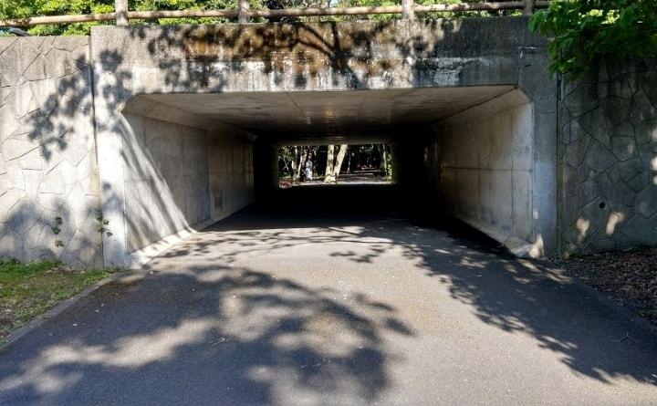 shiminnomori-park7-min