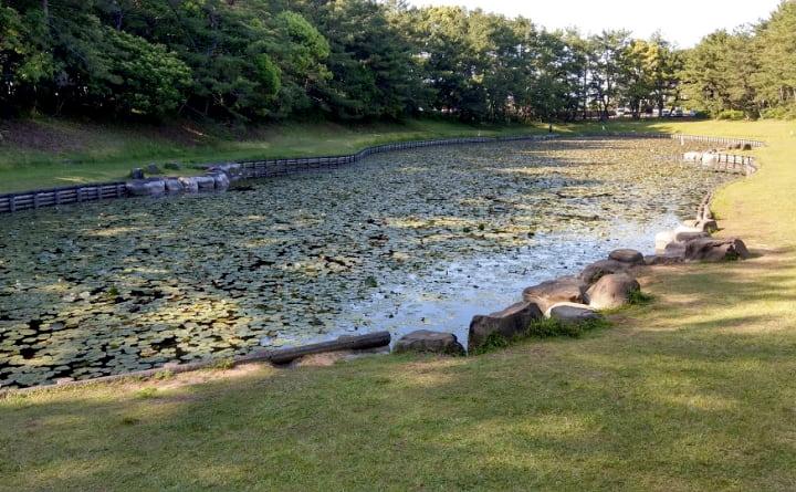 shiminnomori-park8-min