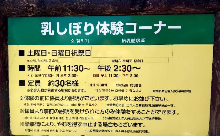 高千穂牧場の乳しぼり体験詳細