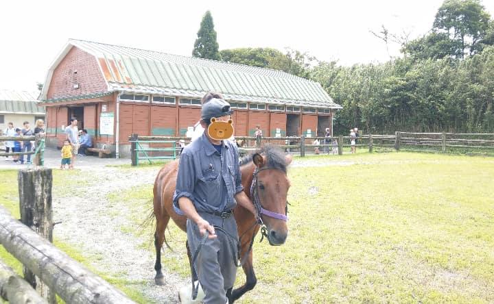 高千穂牧場の乗馬体験