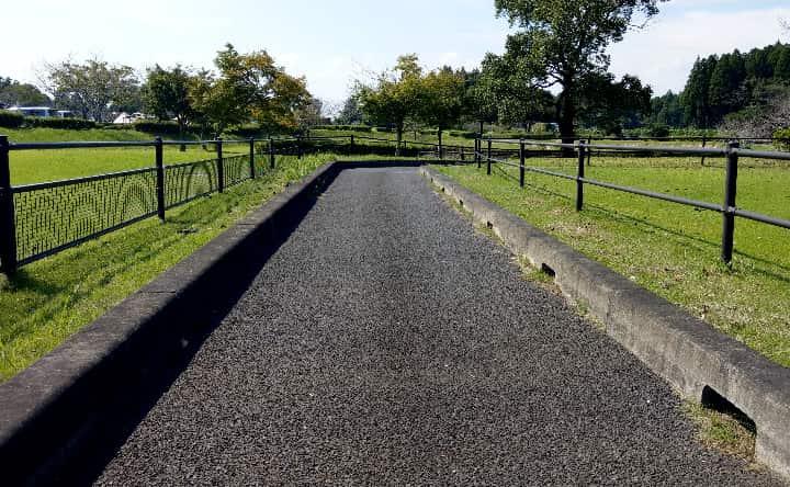 観音池公園のゴーカート道