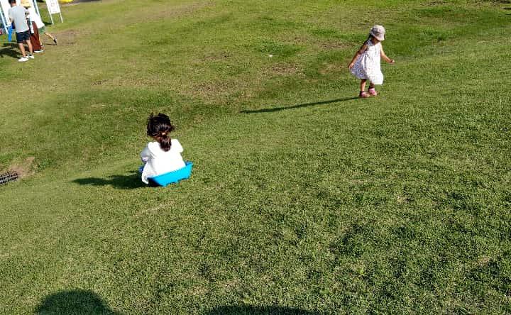 観音池公園の芝生ソリ