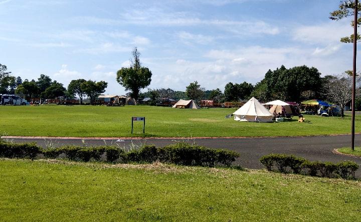 観音池公園のキャンプ場