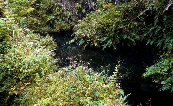 高千穂峡の七ツヶ池