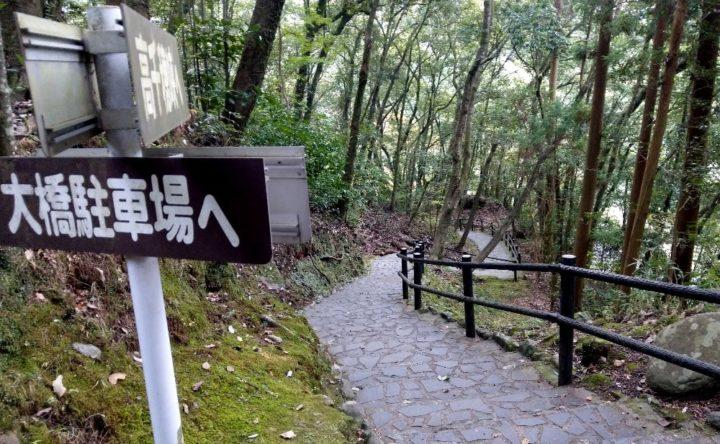 遊歩道の階段